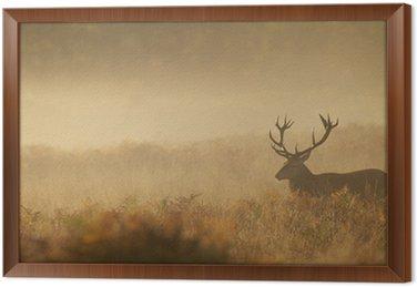 Obraz w Ramie Jelenia we mgle