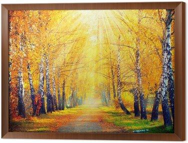 Jesienny Park. Jesienne drzewa i liści w promieniach słońca