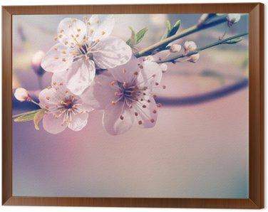Obraz w Ramie Karta wiosna, tło