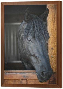 Obraz w Ramie Koń w stajni