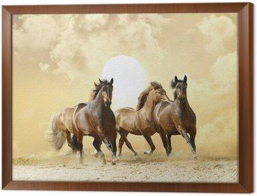 Obraz w Ramie Konie uruchomić