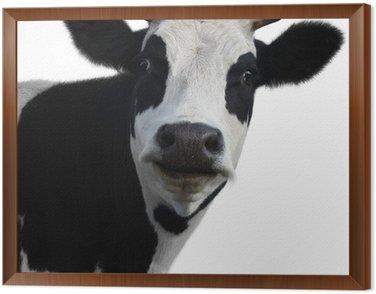 Obraz w Ramie Krowa 2 (10). jpg
