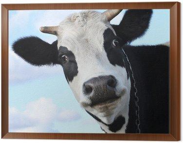Obraz w Ramie Krowa