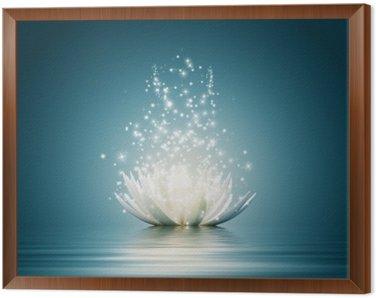 Obraz w Ramie Kwiat lotosu