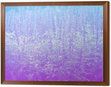 Obraz w Ramie Lawenda w pastelowych stylów.