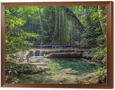 Obraz w Ramie Liany w dżungli. Erawan National Park w Tajlandii
