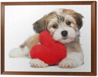 Obraz w Ramie Lover Valentine Hawańczyk pies puppy z czerwonym sercem