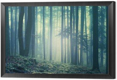 Obraz w Ramie Magiczne niebieski zielony nasycony mglisty krajobraz drzew leśnych. Efekt koloru filtr. Zdjęcie zostało zrobione w południowo-wschodniej Słowenii, Europa.