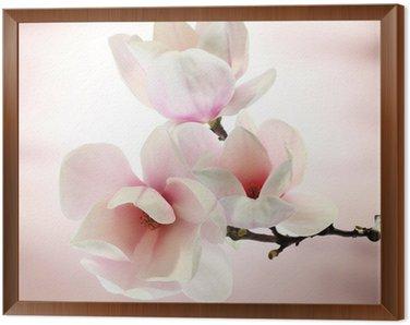 Obraz w Ramie Magnolia