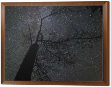 Obraz w Ramie Mleczna droga krajobraz