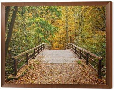Most w lesie jesienią