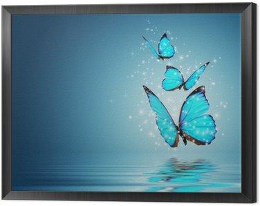 Obraz w Ramie Motyl