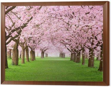 Obraz w Ramie Ogrody kwitną w całości