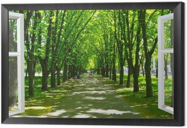 Obraz w Ramie Okno otwarte na piękny park z wieloma zielonymi drzewami