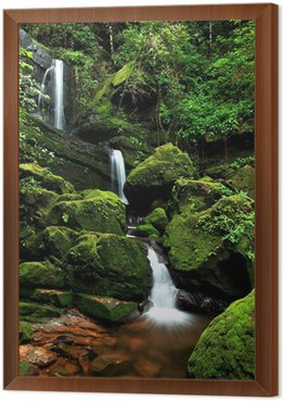 Obraz w Ramie Piękne strumienia w Moss wodospadu, Phu Soi Dao National Park, U
