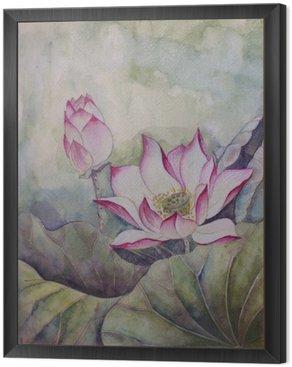 Obraz w Ramie Piękny kwitnący lotos