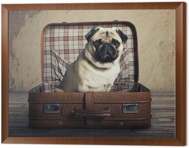 Obraz w Ramie Pies w sprawie