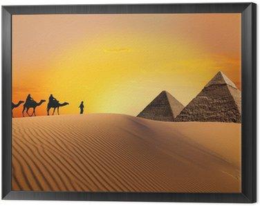 Piramidy, wielbłąd i zachód słońca