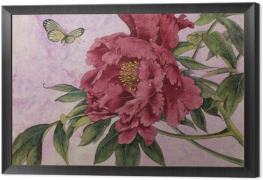 Obraz w Ramie Piwonia delikatna i motyl