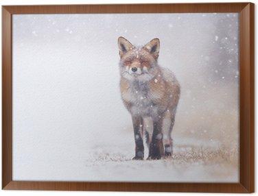 Obraz w Ramie Red fox w