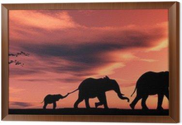 Obraz w Ramie Rodzina słoni.