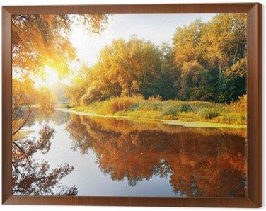 Rzeka w lesie jesienią wspaniałe