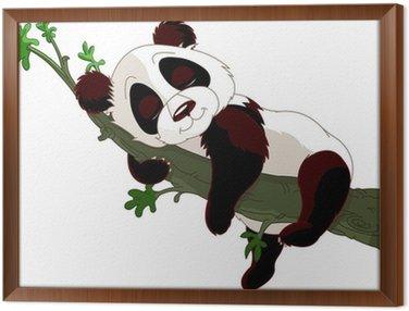 Obraz w Ramie Sleeping Panda na gałęzi