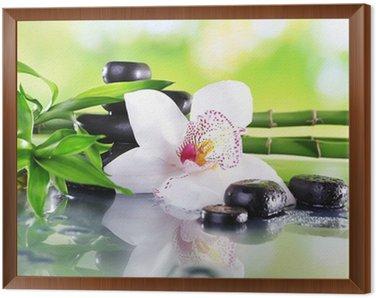 Obraz w Ramie Spa kamienie, bambus gałęzie i biały storczyk