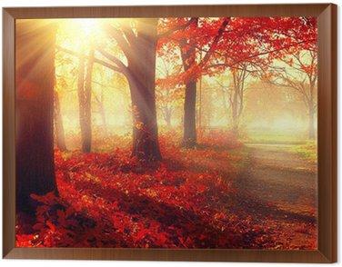 Spadek scena. Piękny jesienny park w słońcu