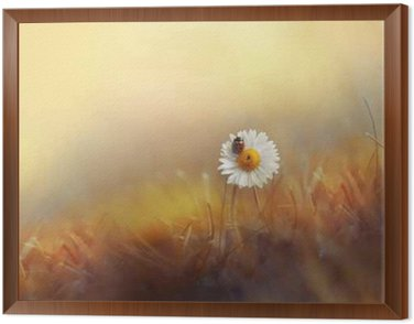 Stokrotki kwiat rumianek z biedronka na trawie na złotym tle letniego słońca o zachodzie słońca w promieniach światła. Piękny romantyczny elegancki artystyczny wizerunek. Tapety na pulpit, karty z pozdrowieniami projekt.