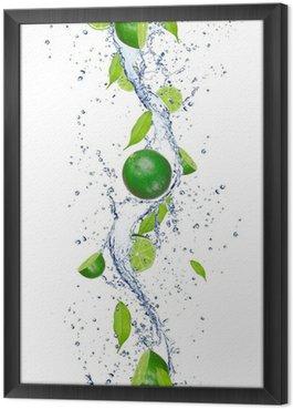 Obraz w Ramie Świeże limonki wchodzące w plusk wody