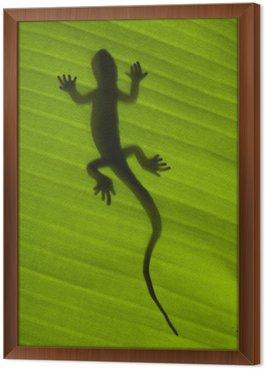 Obraz w Ramie Sylwetka jaszczurki gecko na zielony liść