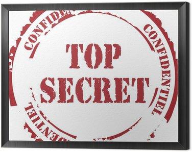 """Obraz w Ramie Tampon """"Top Secret"""""""