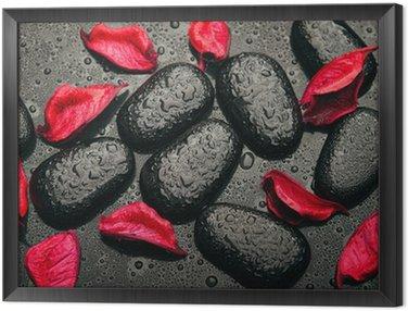 Obraz w Ramie Tło spa. czarne kamienie i czerwone płatki z kropelek wody