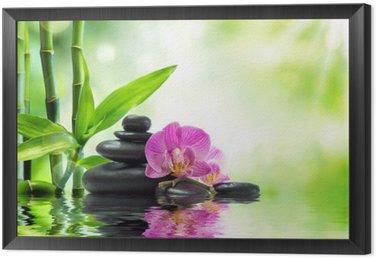 Obraz w Ramie Tło spa - storczyki czarne kamienie i bambusa na wodzie