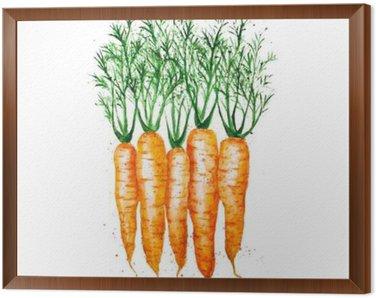 Obraz w Ramie Wektor akwarelowy marchewki, na białym tle
