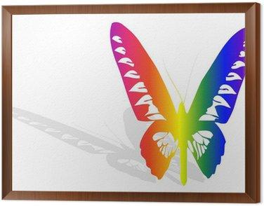 Obraz w Ramie Wielobarwny motyl i cień