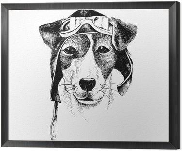 Obraz w Ramie Wyciągnąć rękę przebrany pies lotnik