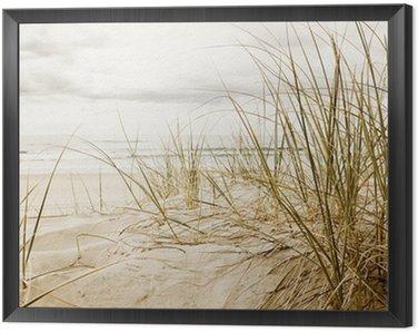 Obraz w Ramie Zamknąć z wysokiej trawy na plaży podczas pochmurnego sezonie