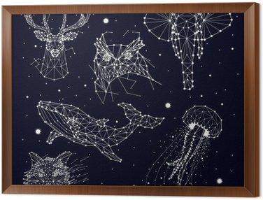 Obraz w Ramie Zestaw konstelacji, słonia, Sowa, jelenie, wieloryby, meduzy, Fox, gwiazda, grafiki wektorowej