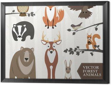 Obraz w Ramie Zestaw zwierząt leśnych. grafika wektorowa