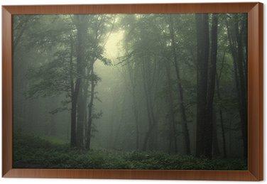 Obraz w Ramie Zielony las po deszczu