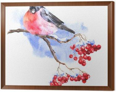 Obraz w Ramie Zima akwarela z Bullfinches