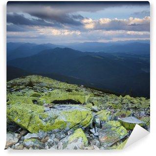 Omyvatelná Fototapeta Carpathian horské krajiny