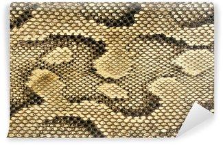 Omyvatelná Fototapeta Hadí kůže-textury