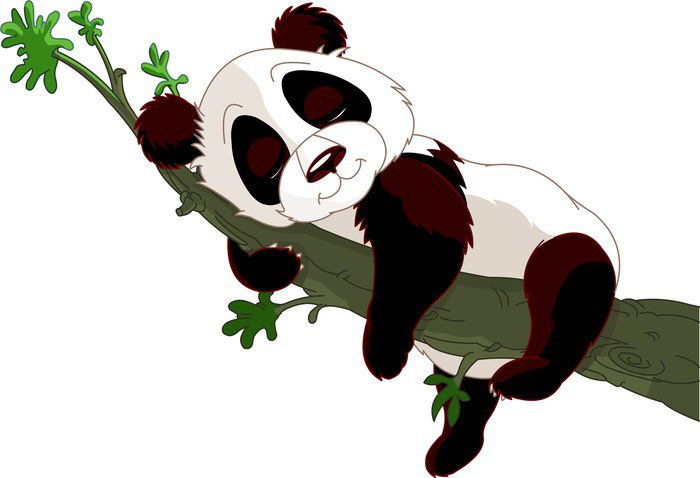Panda sleeping on a branch
