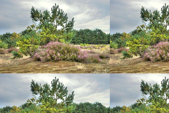 Papel de Parede em Vinil Landscape on the moor - Céu
