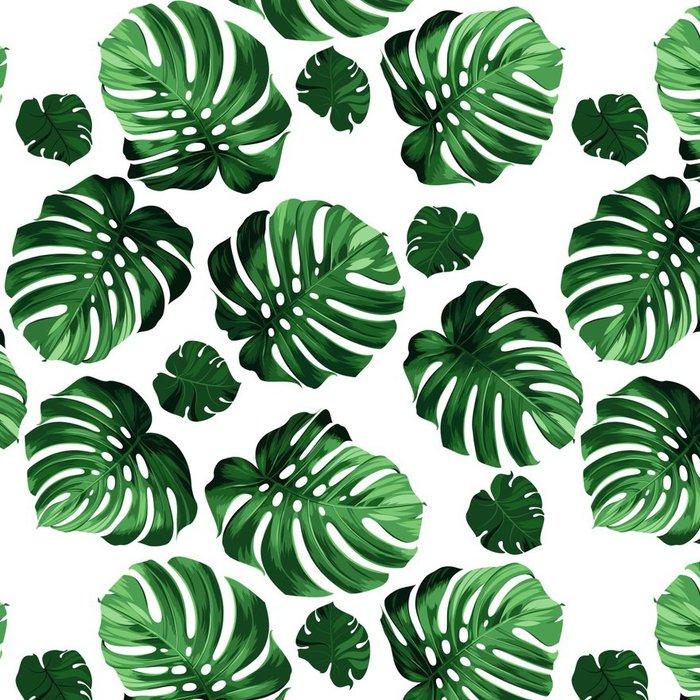 papier peint motifs vinyle feuilles monstera fond pixers nous vivons pour changer. Black Bedroom Furniture Sets. Home Design Ideas