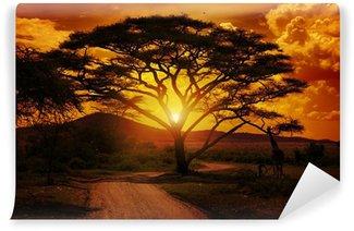 Papier Peint Vinyle Afrique coucher de soleil