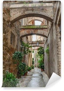 Papier Peint Vinyle Antique italien alley